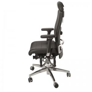 Haider BioSwing 660 iQS Executive Ergonomic Chair Review