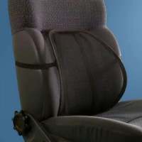 B2 Mesh Lumbar Support