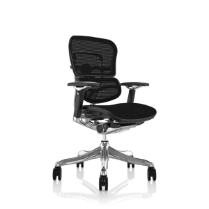 ergohuman_plus elite_project chair