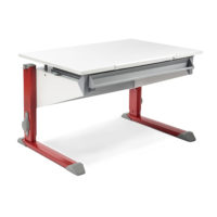 New Product: Moll Bandit Children Desk
