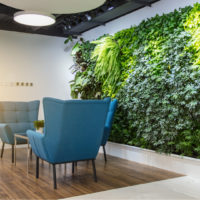 Why Your Office Should Add Botanical Spaces